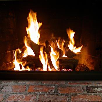1100pl napoleon wood stove